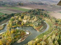 Odra river bends